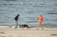 Two women and dog, Breezy Point, Jamaica Bay June 3, 2012