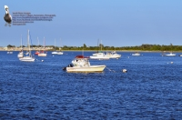 BPYC Boats 2