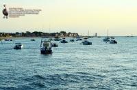 Breezy Point Bayside 8