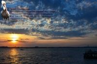 Breezy Dock Sunset 1