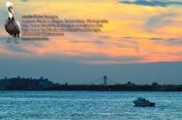 Brooklyn sky Verrazano boat 1
