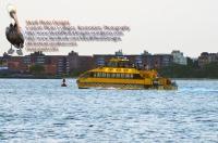 NY Water Taxi Jamaica Bay