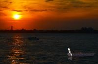 Orange sunset Verrazano Boat