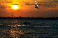 Verrazano Boat Sunset 01